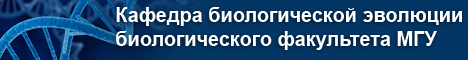 Шапка название кафедры-1