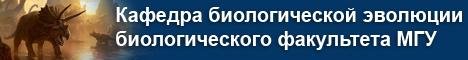 Шапка название кафедры-2