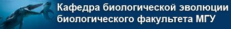 Шапка название кафедры-3