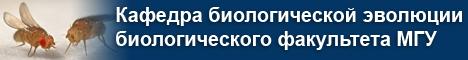 Шапка название кафедры-4