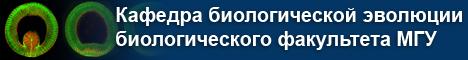 Шапка название кафедры-6